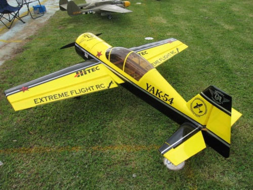 Extreme Flight black and yellow yak54