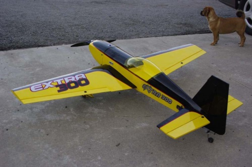 Nice yellow and black extra 300