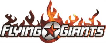 Flying Giants Flame rc digital decal