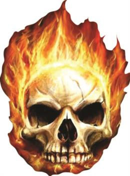 Skull Flame rc digital decal